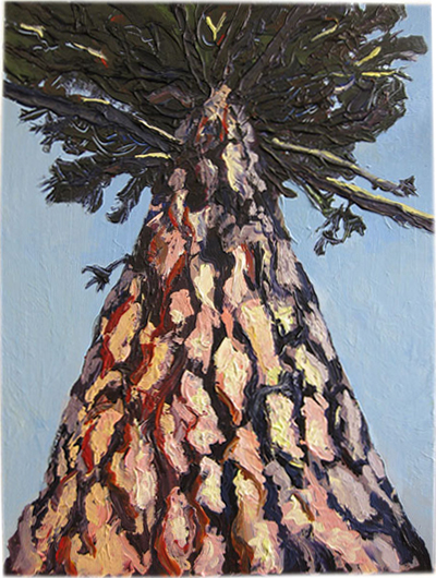 painting of a ponderosa pine tree