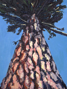 Painting of Ponderosa Pine tree